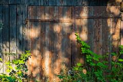 Tor (JBsLightAndShadow) Tags: summer field sunshine nikon sommer feld felder sunny fields heidelberg sonnig sonnenschein nikond3300 d3300