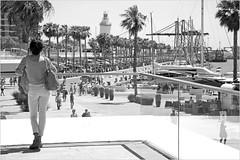 Paseo del Muelle Dos, Malaga, Andalucia, Espana (claude lina) Tags: claudelina espana spain espagne andalucia andalousie malaga grues cranes bateaux ships boats paseodelmuelledos