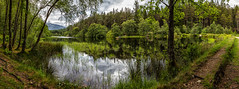 Glencoe Lochan (pauldunstan1968) Tags: trees mountain lake green water forest landscape scotland outdoor panoramic glen highland glencoe loch coe lochan