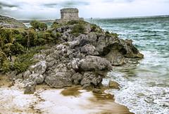 el castillo - Tulum, Mexico (Cuernavaca, Morelos Mexico) Tags: parque sea mexico mar site sony tulum playa palmeras unesco fotos cancun zona castillo mayas roo caribe quintana humanidad patrimonio arqueologica dscw70