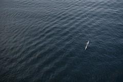(jsswiss) Tags: sverige mlaren lake vsterbron sweden stockholm summer canoe ocean sea sigma30mmf14dchsmart sigmaart f14 30mm d7200 sigma nikon vsco