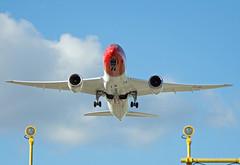 LN-LNB (Skidmarks_1) Tags: norway airport aircraft aviation airliners osl engm boeing787 oslogardermoenairport norwegianairinternational lnlnb