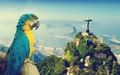 Lettera da un italiano di Rio de Janeiro (ViaggioRoutard) Tags: rio brasile olimpiadi crisi