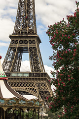 Tower Flower (Michael Monroe) Tags: flowers paris france tower europe eiffel franais parisian