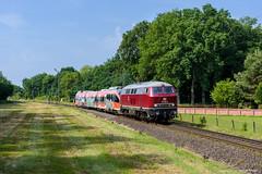 215 001 - Estorf (Weser) (tog-i-danmark) Tags: de deutschland eisenbahn ssm neumnster 2016 verkehrsmittel einfahrsignal hammpbf 215001 railsystemsrpgmbh natobahn vzg1741 estorfweser dgs95534 644047