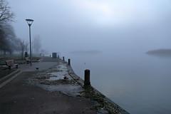 Lamp and Fog (blachswan) Tags: ballarat victoria australia lakewendouree fog lamp sun