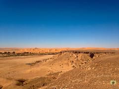 Rive droite de l'Oued Saoura avec, de l'autre ct de la rivire, le Grand Erg Occidental (Ath Salem) Tags: algrie bchar taghit beni abbes kenadsa barrage djorf torba dsert sahara tourisme dcouverte palmeraie           dunes zousfana saoura