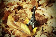 Otoño en París (h.m1505) Tags: parís torre eiffel france hojas otoño amarillo canon