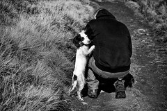 Pick me up daddy ....... (Missy Jussy) Tags: rupert dog pets animal man trevorkerr englishspringer springerspaniel spaniel grass path dogwalk canon cannon600d canon70200mm mono monochrome blackwhite bw blackandwhite littledoglaughednoiret