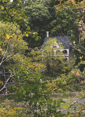 Abandoned Mansion on the River (Christie Purchase) Tags: house mansion windows abandoned deserted graffiti trees forest derelict nature river thames branches park london ontario canada canon 50mm frame