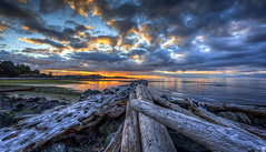 New Day (Paul Rioux) Tags: nature seascape seashore beach driftwood logs daybreak morning sunrise clouds calm water reflections outdoor vancouverisland victoria colwood westshore westcoast bc scenic canon 6d esquimaltlagoon prioux
