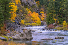 Wenatchee River in Fall Colors.jpg (Eye of G Photography) Tags: trees orange usa mountains green water leaves yellow river landscape fallcolors places evergreen northamerica deciduous washingtonstate wenatcheeriver lllllll stevenspasshwy