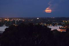 Moonrise over Adelaide (ap0013) Tags: moon night twilight south au australia moonrise adelaide southaustralia adelaideaustralia