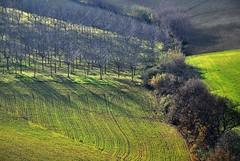 scorcio 2 (luanagabbianella) Tags: italy naturaleza nature italia natura marche naturalmente