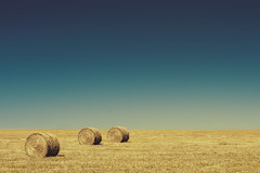 Tranquilidad (emiliokuffer) Tags: panorama vintage landscape countryside horizon campo hay bale horizonte heno roundhaybale