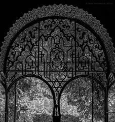 Cristalera (Javier Martinez de la Ossa) Tags: blackandwhite bw espaa blancoynegro ventana reja sevilla andaluca spain puerta seville bn espagne cristalera realesalcazares jardinesdelalcazar alcazardesevilla javiermartinezdelaossa