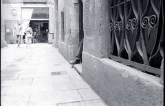 Un pedi fora (3nt) Tags: barcelona blackandwhite born shoes hc110 nikonfm2 analogphotography barcellona foots laribera kodaktrix400 nikon35mmf2ais selfdevelopedfilm carrerbanysvells
