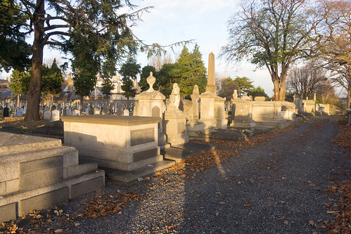 Mount Jerome Cemetery & Crematorium is situated in Harold's Cross Ref-100463
