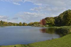 Le grand tang et les arbres autour (Flikkersteph -4,000,000 views ,thank you!) Tags: park autumn trees brussels sunlight reflection clouds pond tervuren beautyofnature magicalscenery