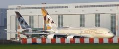 F-WWSS // Etihad Airways // A380-861 // MSN 166 & 176 (Martin Fester) Tags: airplane airport aircraft hamburg airbus a380 etihadairways 170 flightline 166 176 finkenwerder etihad edhi xfw a380861 fwwss fwwab a6apb a6apa msn166176 xfwedhi