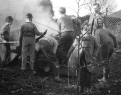 Supervised Bonfire (theirhistory) Tags: wood england man tree boys kids fence children fire sticks shoes play seat coat pipe burning bonfire jacket rubbish trousers jumper wellingtonboots wellies chores supervised