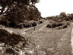 La Franca, Asturias. (IsaCaballero8) Tags: espaa sepia tren rail asturias bosque solitario abandonado vas