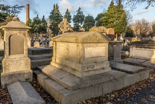 Mount Jerome Cemetery & Crematorium is situated in Harold's Cross Ref-100459