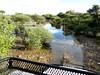 Botswana Hunting Safari 25