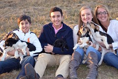 154_Fotor (ashlyn.maria) Tags: family boy dog baby cute love beagle dogs girl sisters portraits puppy mom happy photo engagement mix puppies lab little brothers sister brother teeth mommy mother smiles adorable teens happiness sharp teen step labs hyper beagles