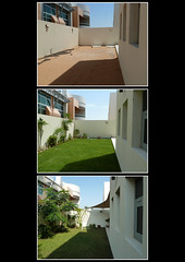 May-June-December (berik) Tags: plants green grass garden three sand triptych uae middleeast abudhabi