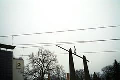 Berlin_KB (Seba Trey) Tags: 35mm iso200 nokton40mm14 push2 voigtländerbessar3a nikoncoolscan8000ed negscn cinestill50film