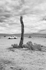 Searching For A Good Signal (autobahn66.com) Tags: sky blackandwhite clouds person desert surreal minimal modernlife saltonsea landsape