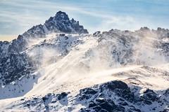 Cima Lobbie (Francy_93) Tags: snow wind neve alpi montagna vento cima ghiaccio lobbie