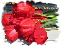 ! Victory Day! (lyudmila fomina) Tags: flowers red canon spring tulips victoryday autofocus 9may mygearandme