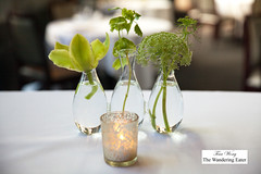 Table centerpiece (thewanderingeater) Tags: atlanta dinner georgia buckhead finedining restauranteugene