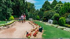 Cockingham Green Gardens, ACT (Mio Marquez) Tags: green gardens au australia roadtrip canberra act 2016 australiancapitalterritory nicholls cockingham cockinghamgreengardens