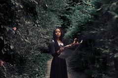 Le Jardin des Rves (VINSO Photographie) Tags: black art floral forest garden french nikon hand dress robe main journal bordeaux jardin flame burn tresse banc feu d800 fret aquitaine gironde vinso