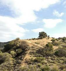 Santa Monica Mountains (ijp01) Tags: california clouds losangeles brush foliage santamonicamountains tarzana hikingtrails caballerocanyontrail