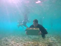 Capu Body Fit (lashawnpagan) Tags: ocean beach training island puertorico arecibo bodyboarding francastro galdodk capucamp