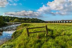 Dutton Horse bridge and Railway Viaduct (Si Bart) Tags: bridge field grass train open railway viaduct dutton hourse