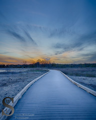 Walking the Boardwalk at sunset (Singing With Light) Tags: sunset photography spring dock pond connecticut sony april boardwalk milford 30th 2016 silversandsstatepark mirrorless lismanlanding upperduckpond singingwithlight singingwithlightphotography helwigstreet alpha6000 sonya6000