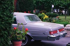 (<mmb>) Tags: ontario film analog 35mm silver grey buick kodak ottawa contax rx parkavenue ektar ektar100