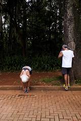 (gustavomorita) Tags: alongamento casal cor corredores costas gustavomorita ibirapuera parque parqueibirapuera selvasp sopaulo