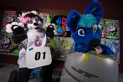 BLFC2016-2330 (Lil Singha Lion & Daiso The Fox Photography) Tags: costumes photography furry little convention biggest fursuit 2016 fursuits furcon biggestlittlefurcon blfc2016