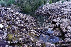 20160627-07-Disappearing Tarn (Roger T Wong) Tags: water outdoors rocks walk australia hike scree tasmania hobart mtwellington bushwalk tramp 2016 wellingtonpark dolerite disappearingtarn sony2470 rogertwong sel2470z sonyfe2470mmf4zaosscarlzeissvariotessart sonya7ii sonyilce7m2 sonyalpha7ii