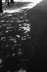 Shadows (Man with Red Eyes) Tags: shadow monochrome analog blackwhite lancashire lancaster leicam6 adox silverhalide poolsoflight v850 td201 silvermax 40mmf14voigtlandersc