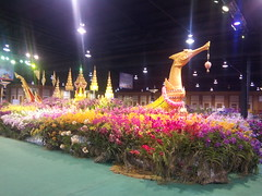 IMG_20160321_111327 (Sasha India) Tags: flowers orchid thailand orchids bangkok exibition apoc   apoc12