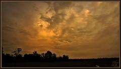 In the rear view mirror (WanaM3) Tags: park sunset nature scenery texas sony scenic houston vista goldenhour a700 sonya700 wanam3 elfrancoleepark