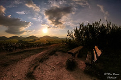 Oasis of calm (Peter Daum 69) Tags: light sunset color nature clouds sunrise canon landscape eos licht scenery natur dream wolken calm oasis mystik farbe moods sonnenaufgang stimmung gefhl palatina