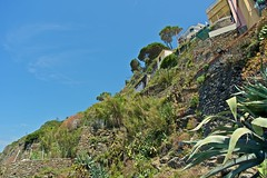 2016-07-04 at 14-05-37 (andreyshagin) Tags: riomaggiore italy architecture andrey shagin summer nikon d750 daylight trip travel town tradition beautiful